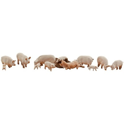 image: Yorkshire Pigs (12)